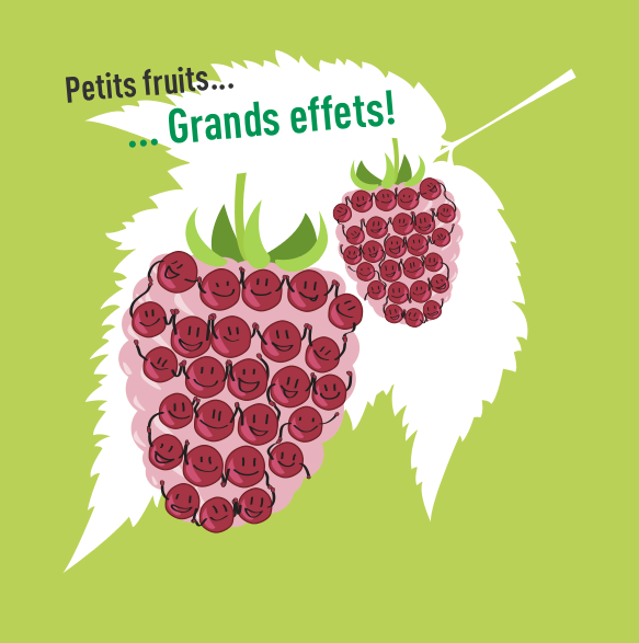 Action « Petits fruits, grands effets »